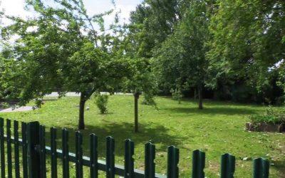 Elton Primary School Community Garden.